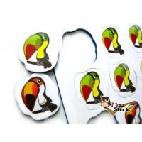 MA29大嘴鳥數數磁鐵